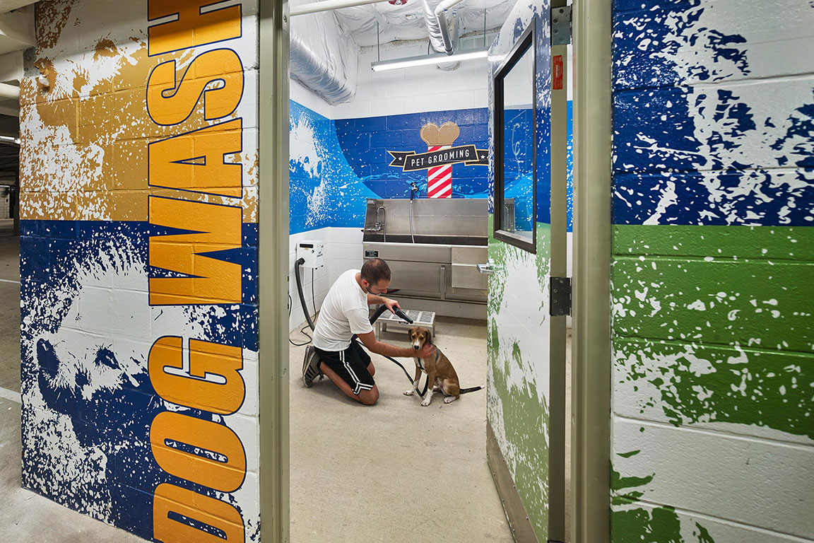 DOG WASH ROOM feature image